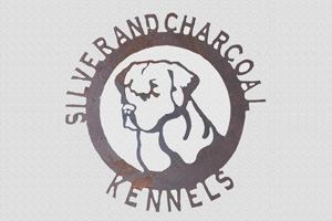 Silver and Charcoal lab kennels